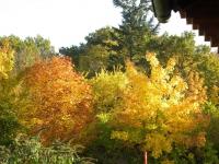 Herbst 2015 Gutsgarten
